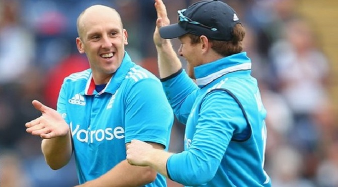 Cricket: James Tredwell: Kent agree new deal with England spinner