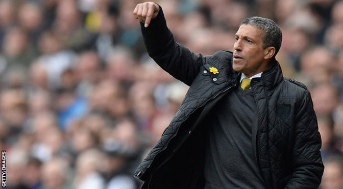 Championship: Chris Hughton named new Brighton & Hove Albion manager